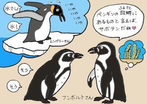 フンボルト ペンギン